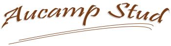 New Aucamp Logo 2.1